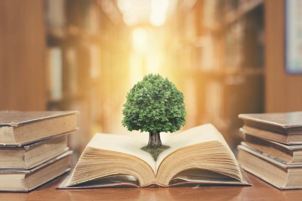 Best Education Studies of 2020